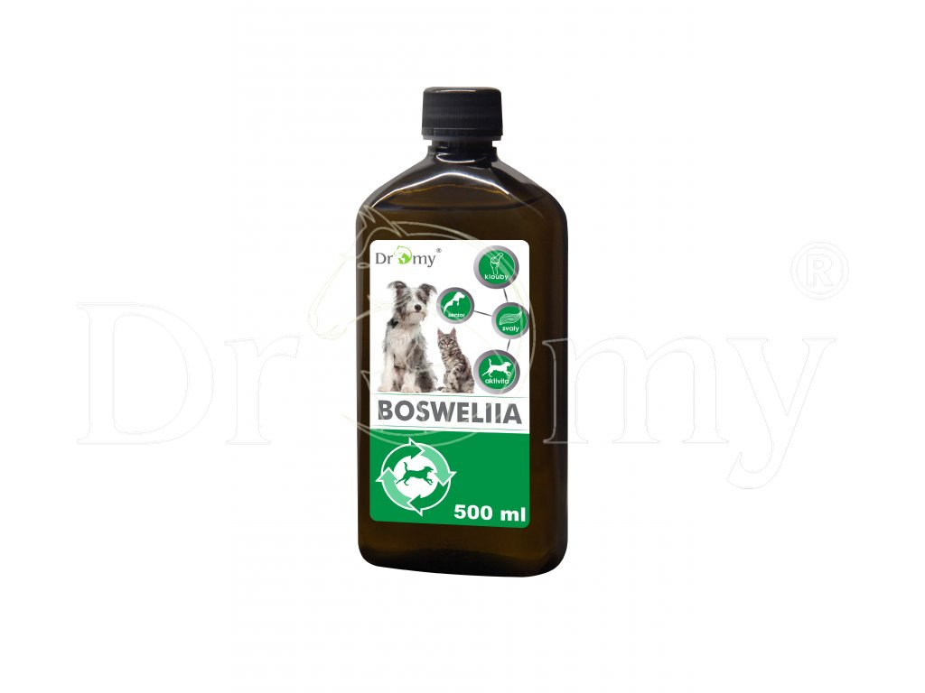 Dromy Boswellia liquid 500 ml