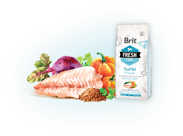 Brit Fresh Fish with Pumpkin Adult Large Muscles & Joints 12kg